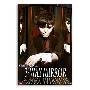 3-Way Mirror by Sean Yang