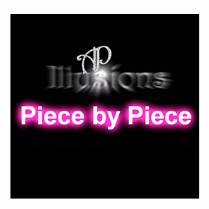 Piece by Piece by Aaron Plener - Download