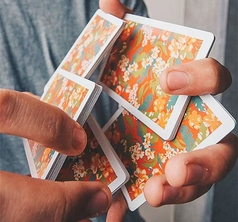 Flora Playing Cards by Paul Robaia
