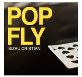 Pop Fly by Bizau Cristian - Download